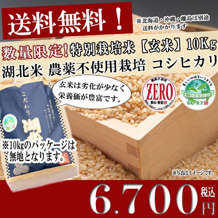 お米/湖北米 農薬不使用米コシヒカリ ZERO【玄米】10kg 特別栽培米