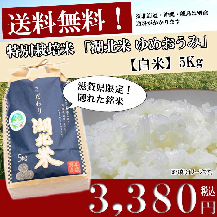 お米 送料無料/湖北米 ゆめおうみ【白米】5kg 特別栽培米