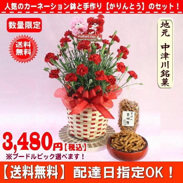 2017赤カーネーションとお菓子のセット3,480円【送料無料】