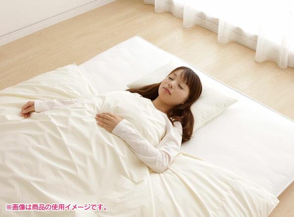 清潔・安心・安全なアレル物質対策寝具!
