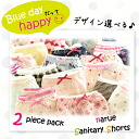 Panties / blue D / cat /fs3gm for two pieces of narue (ナルエー) サニタリーショーツ set / panties / menstruation