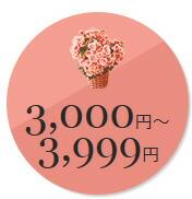 4000円以下