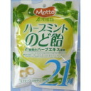 Motto herb Mint faux candy fs04gm