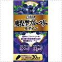 DHA absorption type blueberrylteinn 90 tablets