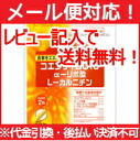 Kobayashi pharmaceutical nutrition supplementary food Coenzyme Q10 α-lipoic acid l-carnitine 60 grain ( approx. 30 min )