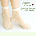 Organic cotton shortstop length horizontal stripes socks fs3gm