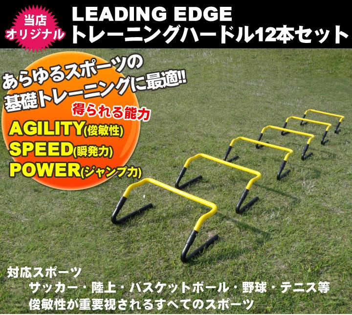 トレーニングハードル12本セット