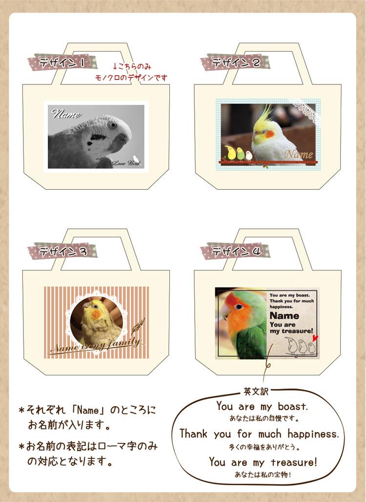 オカメインコ 文鳥