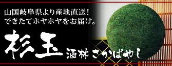 杉玉(酒林さかばやし)