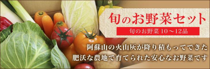 合志の旬のお野菜セット