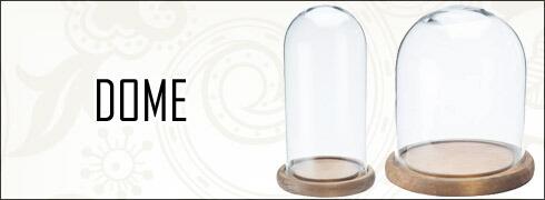 ガラスドーム グラスドーム ドームグラス