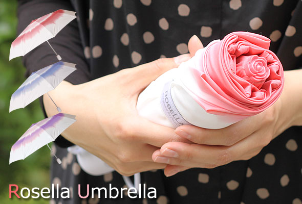 雨天和晴天的时候,美丽的玫瑰,一只手,丰富,优雅感觉郊游 !