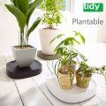 tidy Plantable プランタブル