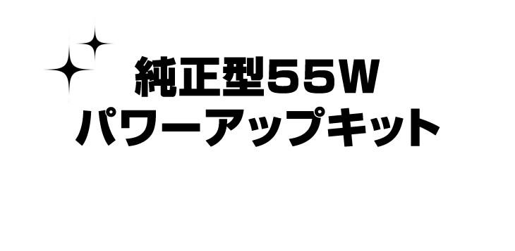 純正型55Wパワーアップキット