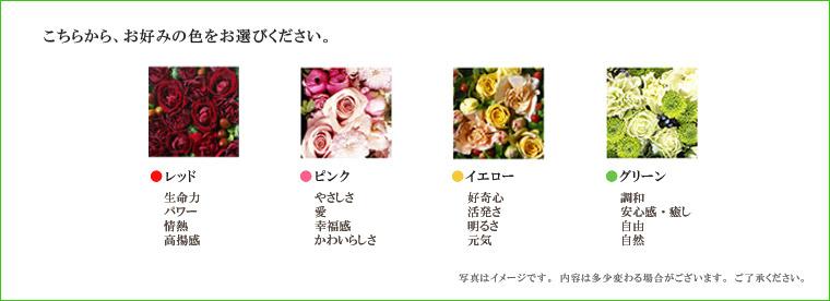 4色からお選びください