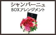 シャンパーニュ BOXアレンジメント