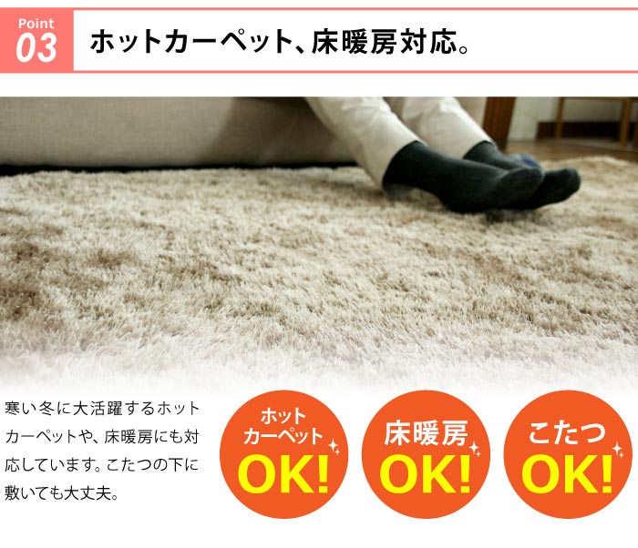 ホットカーペット、床暖房対応。