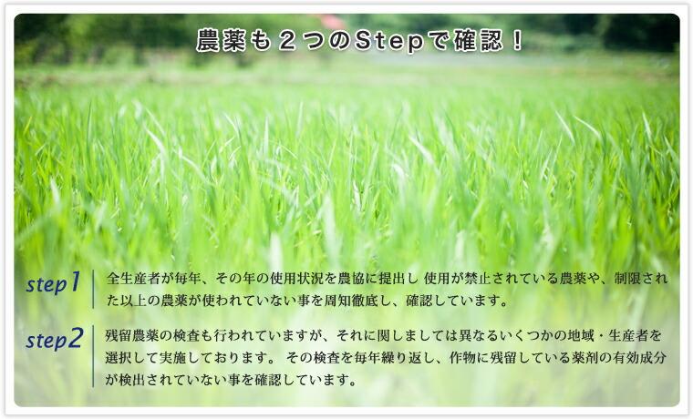 농약도 2개의 스텝에서 확인!