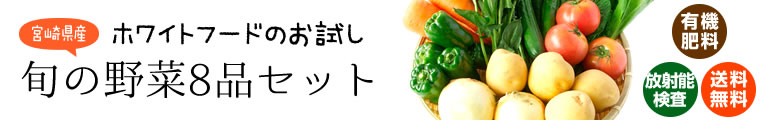 宮崎県産 お試し旬の野菜8品セット