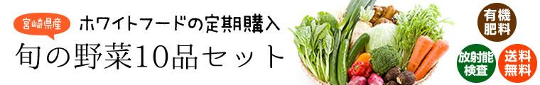 宮崎県産 旬の野菜10品セット