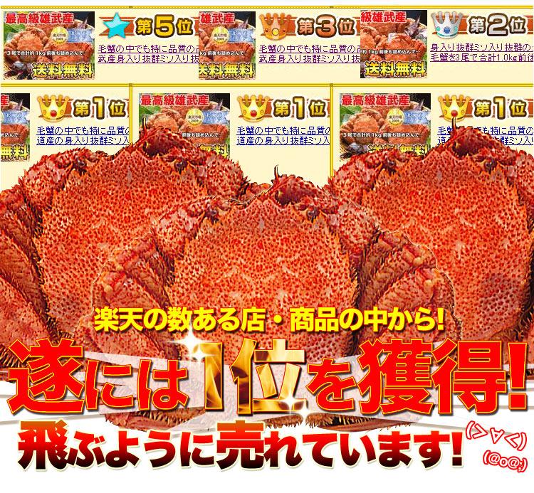 ck-kegani3_02.jpg
