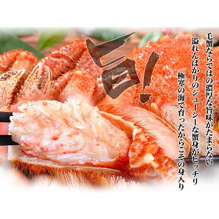 ck-kegani_07.jpg