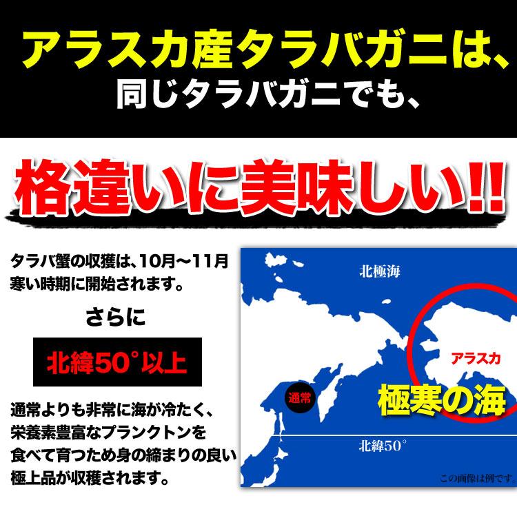 ct-arasuka_3.jpg