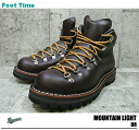 Danner mountain light DANNER MOUNTAIN LIGHT BR #30866