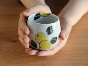 amabro×moomin 染付け茶碗