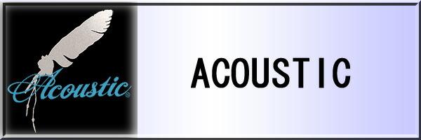 11_acoustic_s