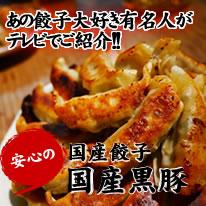 熊本餃子国産野菜肉使用タレなしでも旨い最先端ギョーザ