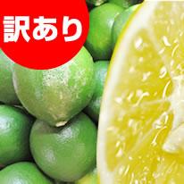 【冷凍便】特選霜降り馬刺しセット(6人前)馬刺し醤油1本