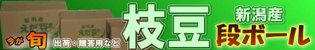 新潟産枝豆段ボールは贈答用としてご利用いただけます!