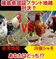 福島県認証ブランド地鶏対決!!会津地鶏VS川俣シャモ あなたはどっち?