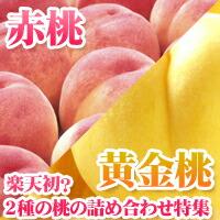 他店では不可能に近い桃・黄桃の『桃の詰合せ』セット