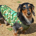 3 / 24 leading often to 10 ☆ F... camouflage half mesh tank