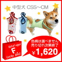 There is Wake to two pieces of one; a manner underwear clearance sale (medium-sized dog use)!