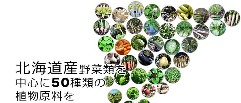 50種類の原料を酵素で