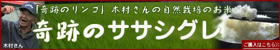 奇跡のお米ササシグレ