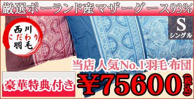 羽毛75600SL