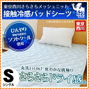 It is point 10 times until September 27! Tokyo Ai Nishikawa's plus cold water and スゴ! It is Respect for the Aged Day a pad (single /100 *205cm) with contact feeling of cold soft cool pad sheet which I use it, and is chilly floor (pad / cool feeling / chi