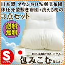 Pair futon / futon セットエクセルゴールド label domestic generating solid France production down 90% domestic profile feather quilt / thickness 10 cm 3 point set ivory synthetic mattress and washable pillows