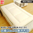 Tokyo Nishikawa domestic production alphabet pattern antibacterial deodorization, tick processing synthetic fiber Jr. mattress (90*180cm) fs3gm-proof