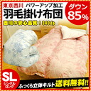 Nishikawa and East 66 River feather duvet power-ups umbrella high more than 145 mm sanitary processing domestically produced new synthetic domestic white down 85% heating or power-up processing feather futon single long is not included