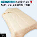 Washable futon / single / skin duvet domestic Dacron Invista cotton クォロフィル use clean skin quilt ( summer skin shades, the winter blanket )