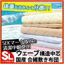 Domestic mattress thickness approximately 9 cm emperor who アクフィット ECO SEK antibacterial defense Dani dust at absorbing sweat drying difficult to clean, over 60 mm wave-solid cotton 3 layers formula lightweight mattress single long mattress / kneeling bed
