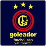 ���쥢�ɡ��� goleador