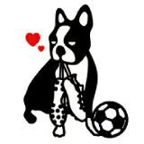 soccer junky ���å��������