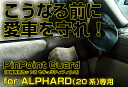 Protect your car before it becomes! Alphard (20 series)
