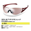 Sports sunglasses swans SWANS titanium red SOU-M TI/R golf house is a person house